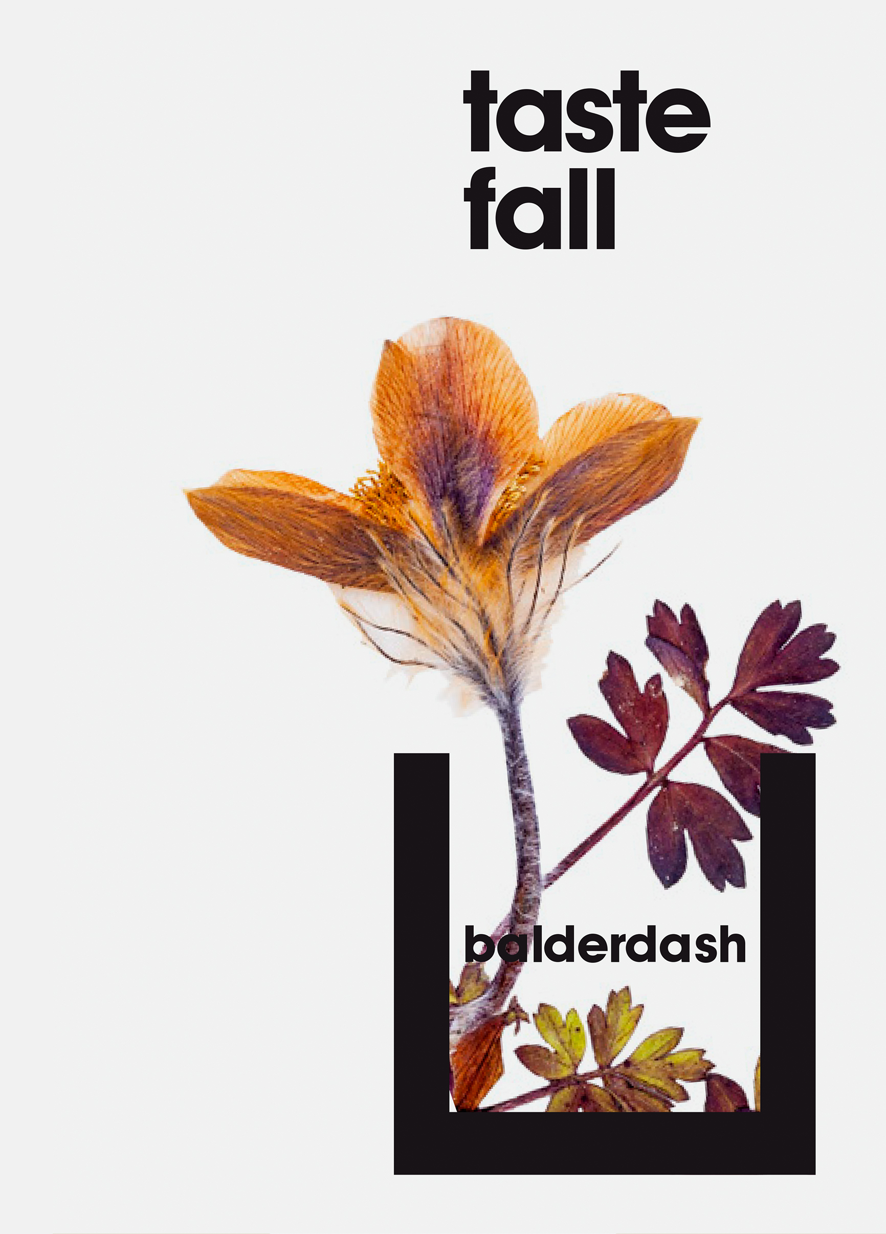Balderdash – Cocktail Bar. Visual Identity by HEAVY™ – www.heavy.tm